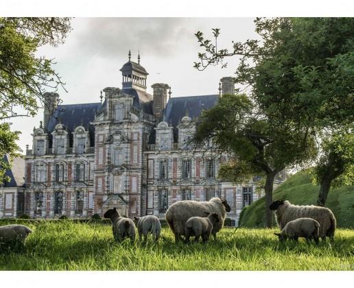 Le Château depuis le verger